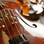 klassisches Streichquartett bestehend aus 2 Violinen (Geigen), Bratsche und Cello